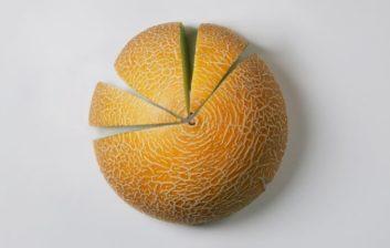 Melon_1200x430